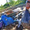 В свете последних событий, многие задаются таким вопросом: «Что делать, если территория около дома похожа на мусорную свалку?»