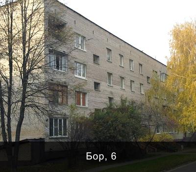 д. Одинцово, владение Бор, дом 6