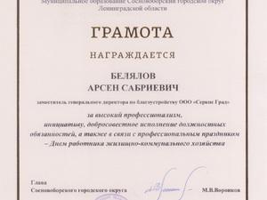 Грамота Белялов А.С..jpg