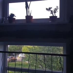 окна машезерская 6.jpg