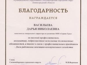 Благодарность Васильева Д.Н..jpg